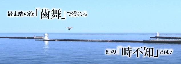 ようこそ北海道根室市小型さけます流し網部会へ